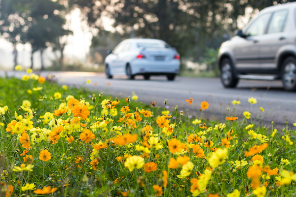 Spring Maintenance Checklist for Your Vehicle